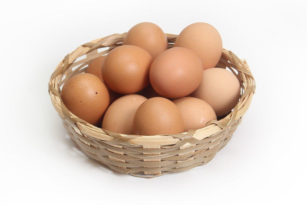 ひとつのカゴにすべての卵を盛るな