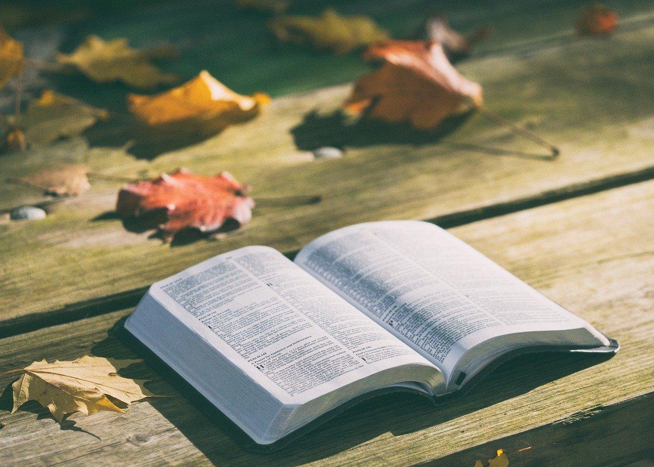 決算書の見方・読み方がわかるようになる初心者におすすめの本5選