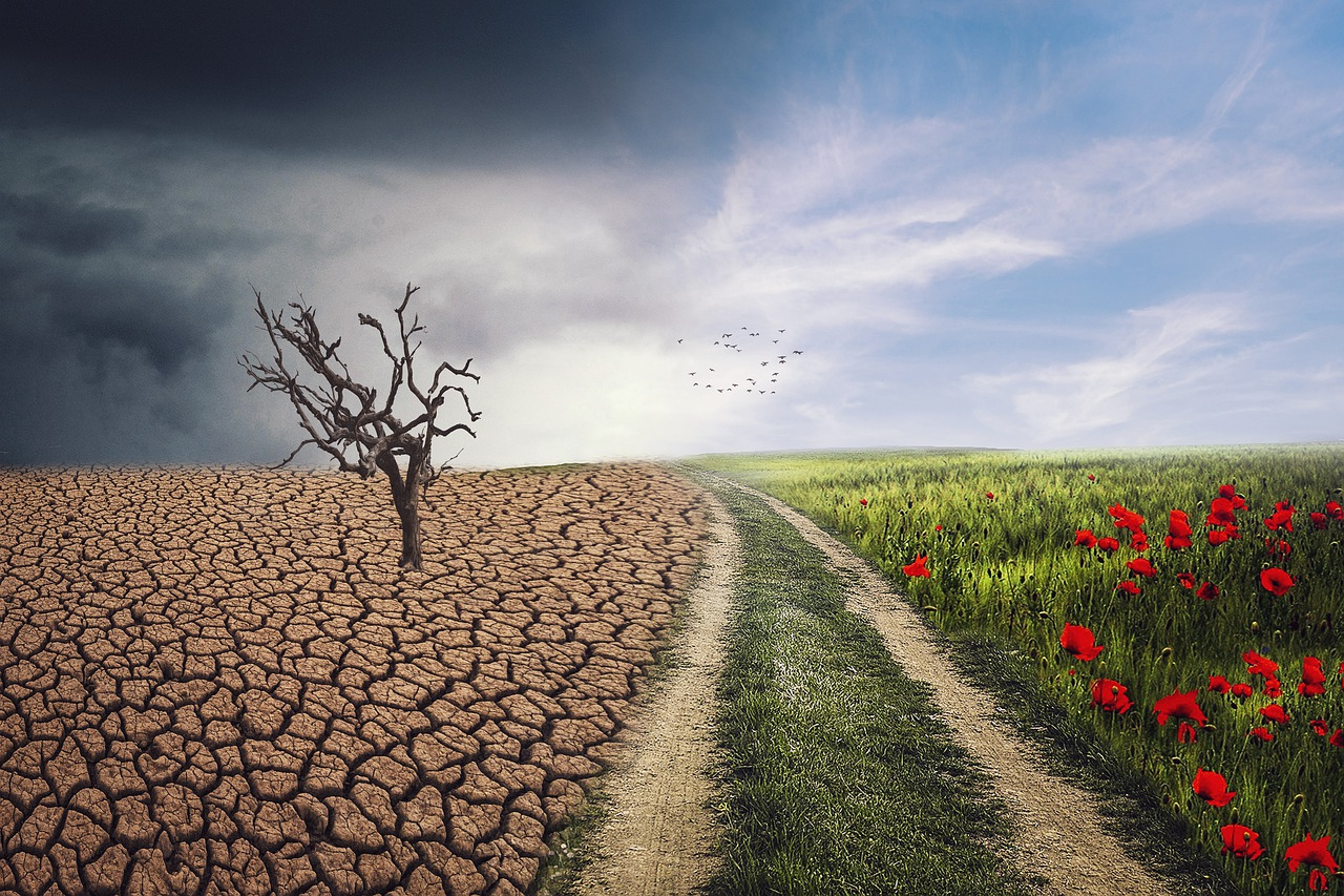 気候変動・地球温暖化について学べるおすすめの本7選