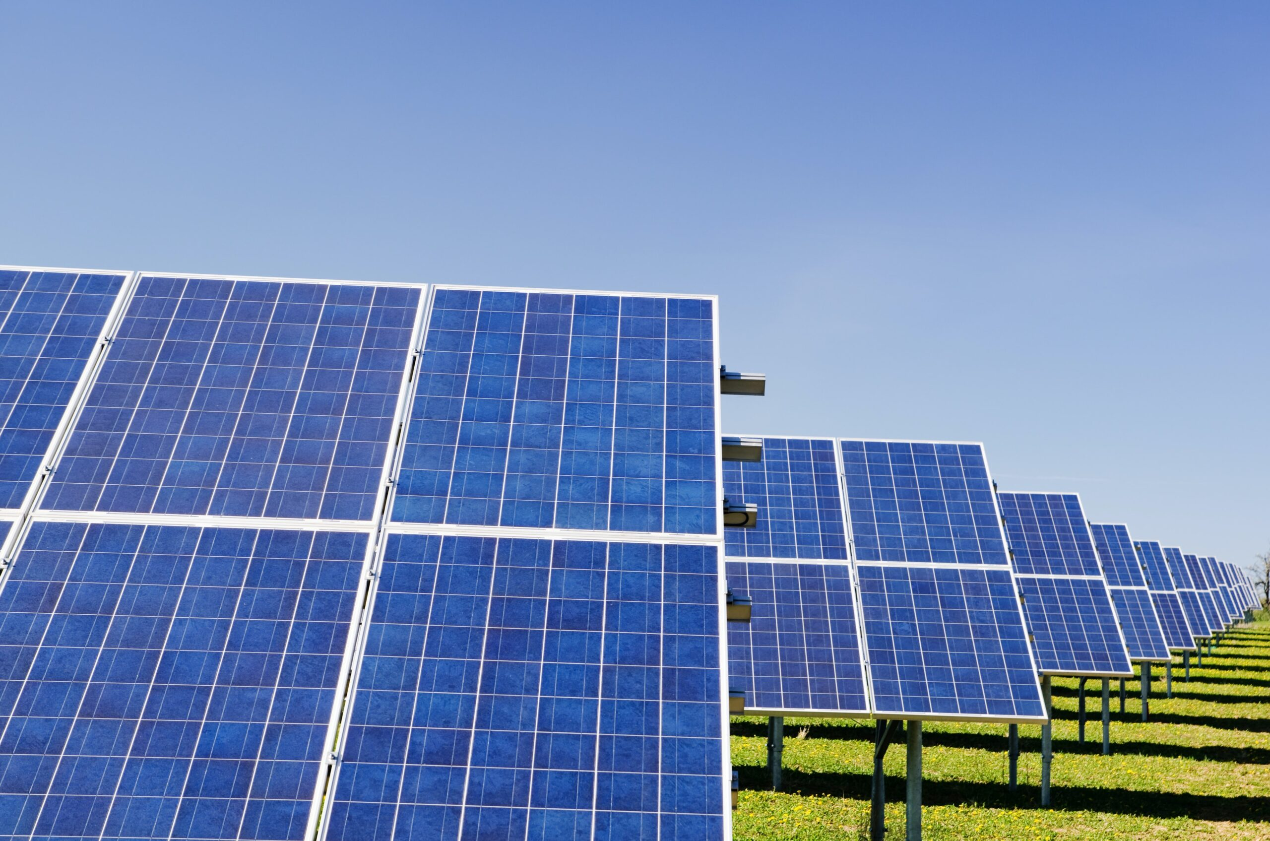 道路が太陽光パネルになる未来がやってくる!森林を伐採しなくて済む